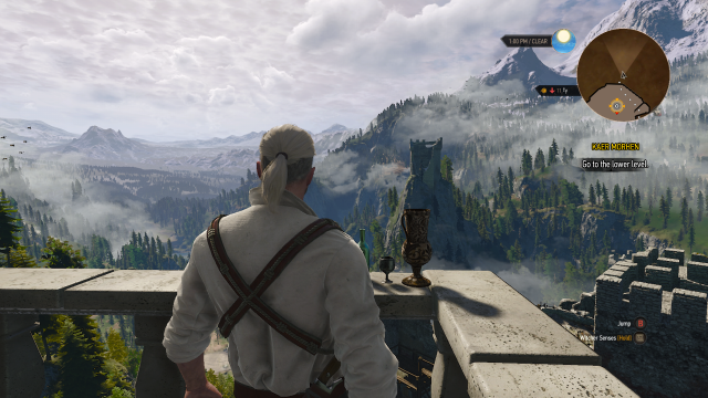 The Witcher 3 Castle View