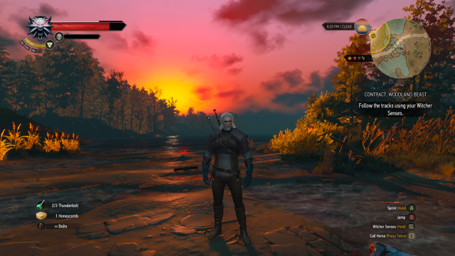 The Witcher 3 Sunset