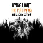 dying-light-the-following-box