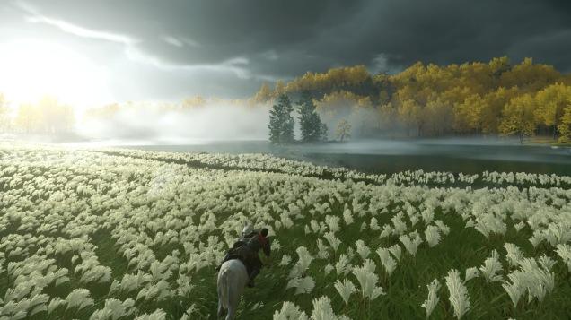 Ghost of Tsushima fields