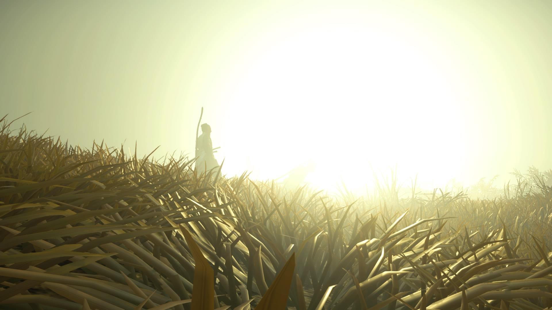 Ghost of Tsushima sunny field